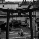 Bicycle On The Other Side Of The Torii