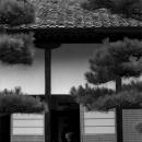Women Wearing Kimono In The Building