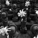 Jizo Pressing Hands Together In Senkyo-ji
