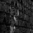 Sake Barrels For Libation In Meiji Jingu @ Tokyo