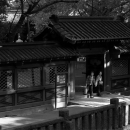 Two Figures Coming Out From The Small Gate @ Tokyo