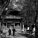 Nio-mon Gate In Shomyo-ji @ Kanagawa