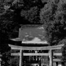 Sacred Arch At Seto Jinja