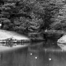 A Small Bridge In Hamarikyu
