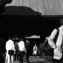 明治神宮の境内のハンチング