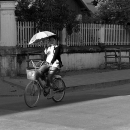 Umbrella, Woman And Bike