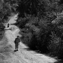 Monk Was Walking The Dirt Road @ Laos