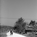 A Dirt Road In Muang Sing