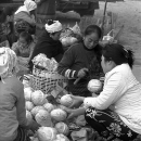 A Heap Of Cabbages And Women @ Laos