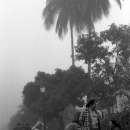 Women Standing Talking In The Morning Fog @ Laos