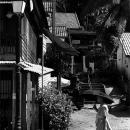 黒い日傘を持つ僧侶
