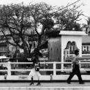 Passing Each Other @ Sri lanka