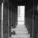 Young Man Sitting Among Columns @ Sri lanka