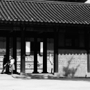 Couple Strolling About Gyeongbokgung