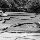 Rice Terrace In Tinglayen @ Philippines