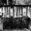 村の鶏小屋