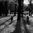 木のまわりで遊ぶ子