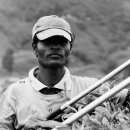 Worker At The Tea Plantation @ Malaysia
