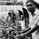 Troop Of Rickshaws @ Bangladesh