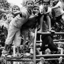 Children On A Jungle Gym