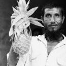 Pineapple He Is Proud Of @ Bangladesh