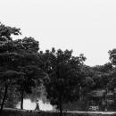 木立の中の小径