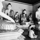 Among Buddhas @ Myanmar