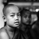 Little Monk Wearing Kasaya