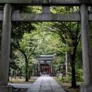 Approach To Akasaka Hikawa Jinja