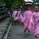 ピンクの袈裟を着た尼僧たち