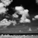 ロールベールラップサイロのある風景