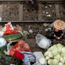 Eggplants, Cabbages, And Railway Track