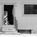 玄関先でひとりで遊ぶ男の子