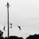 Voladores @ Mexico