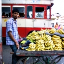 Man Selling Bananas In The Bus Terminal