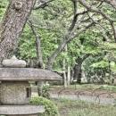 Stone Lantern In Shinjuku Gyoen Park