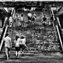 Stair In Yoyogi Park @ Tokyo