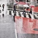 Umbrellas In The Wet Crossing