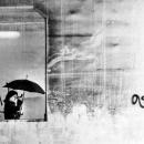 Umbrella In The Frame