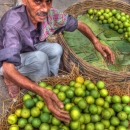 Man Selling Fruits