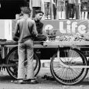 台車の上の青年とアーティチョーク