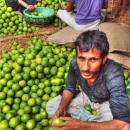 Man In The Heap Of Oranges @ India