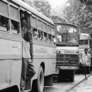 Line Of Buses @ India