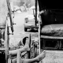 Legs Of Rickshaw Wallah @ India