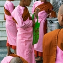 Little Buddhist Nuns Wearing Pink Kasaya