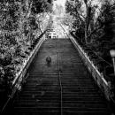 Advancement Stairway