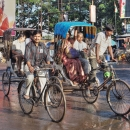 Bicycle And Cycle Rickshaw