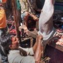 Butcher @ India
