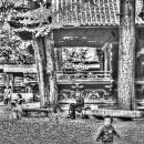 Boy In The Shrine