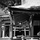 Shinto Priest Under The Thatched Roof